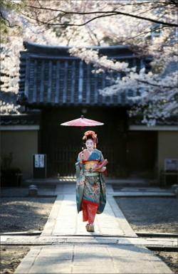 Kyoto 京都府