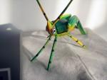 瓦哈卡 木雕 彩绘蚱蜢